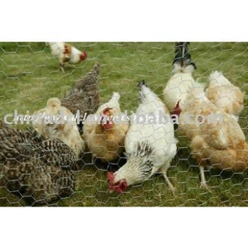 chicken wire,coop mesh