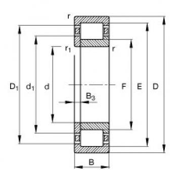 Cylindrical Roller Bearings Distributior NUP244-E-M1 FAG