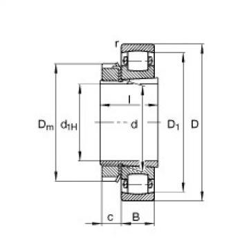 Spherical Roller Bearings 20318-K-MB-C3 + H318 FAG