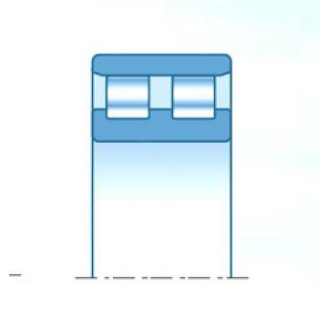 Cylindrical Bearing NN4938KD1C1NAP4 NTN