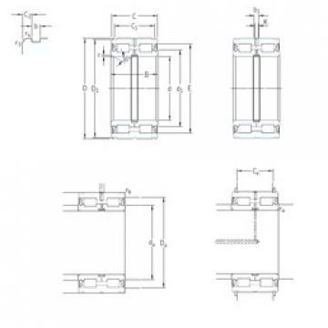 Cylindrical Roller Bearings Distributior NNF5019ADA-2LSV SKF