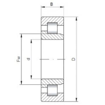 Cylindrical Bearing NJ3211 ISO