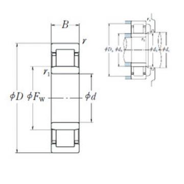 Cylindrical Roller Bearings Distributior NU1015 NSK
