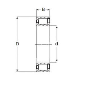 Cylindrical Bearing NCF3040 V SIGMA