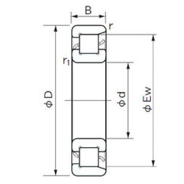 Cylindrical Bearing NF 208 NACHI