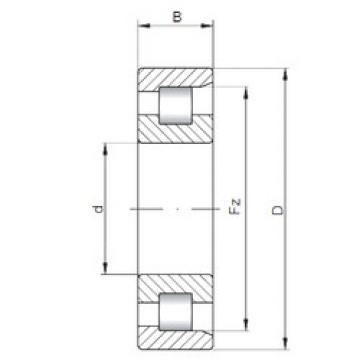 Cylindrical Bearing NF220 E CX