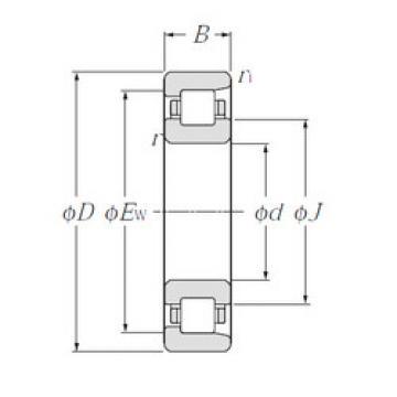Cylindrical Bearing NF210 NTN