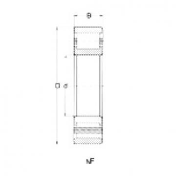 Cylindrical Bearing NF214 CRAFT