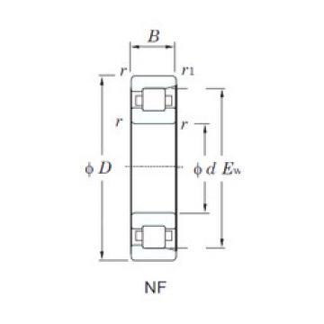 Cylindrical Bearing NF210 KOYO