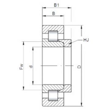 Cylindrical Bearing NH210 ISO