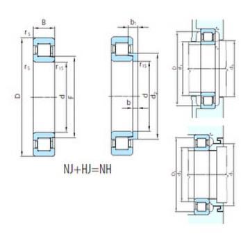 Cylindrical Bearing NH248 PSL