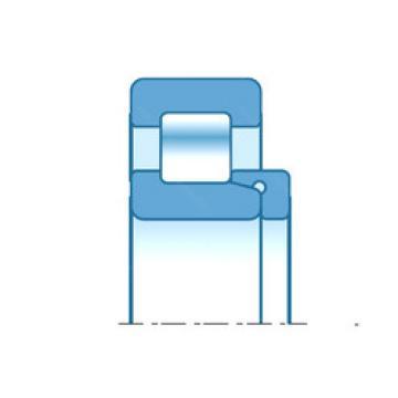 Cylindrical Bearing NH417 NTN