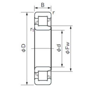 Cylindrical Bearing NJ 2228 E NACHI