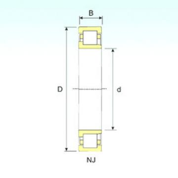Cylindrical Bearing NJ 2203 ISB