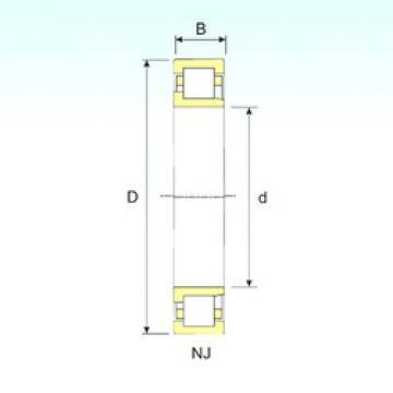 Cylindrical Bearing NJ 312 ISB