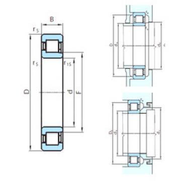 Cylindrical Bearing NJ1888MA PSL