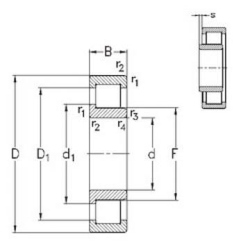 Cylindrical Bearing NJ252-E-M6 NKE
