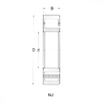 Cylindrical Bearing NJ305 CRAFT