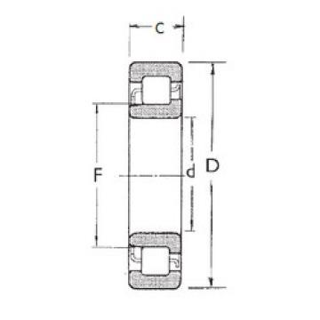 Cylindrical Bearing NJ317 FBJ