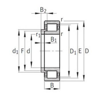Cylindrical Bearing NJ248-E-M1+HJ248-E FAG