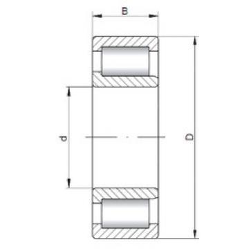 Cylindrical Bearing NJF2308 V ISO