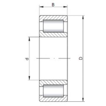 Cylindrical Bearing NJF2317 V ISO