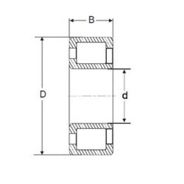 Cylindrical Bearing NJG 2332 VH SIGMA