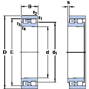 Cylindrical Bearing NN 3005 K/SP SKF