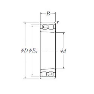 Cylindrical Bearing NN 3019 K NSK