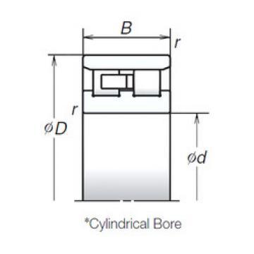 Cylindrical Bearing NN3017MB NSK