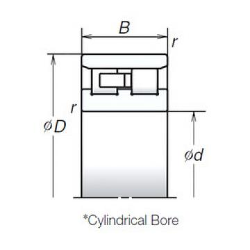 Cylindrical Bearing NN3017TB NSK