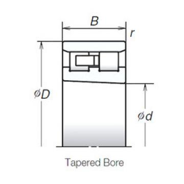 Cylindrical Bearing NN3020ZTBKR NSK