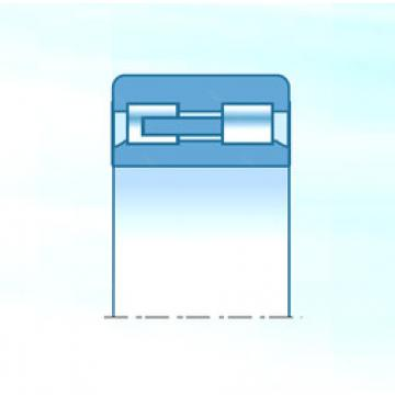 Cylindrical Roller Bearings Distributior NNU4968KC1NAP4 NTN