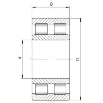 Cylindrical Roller Bearings Distributior NNU6016 ISO