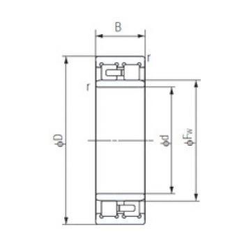 Cylindrical Roller Bearings Distributior NNU4952 NACHI