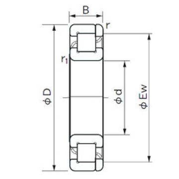 Cylindrical Roller Bearings Distributior NP 1017 NACHI