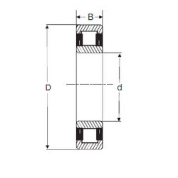 Cylindrical Roller Bearings Distributior NU 2208 SIGMA