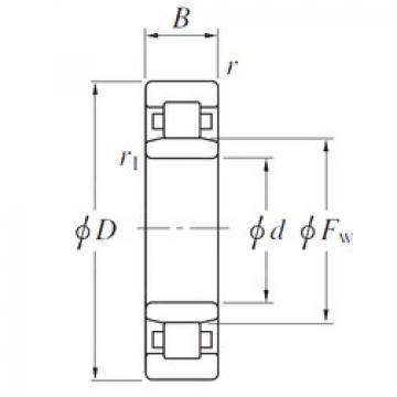 Cylindrical Roller Bearings Distributior NU19/560 KOYO