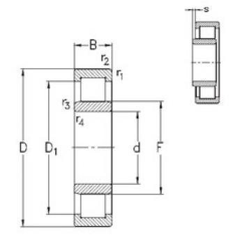 Cylindrical Roller Bearings Distributior NU1022-E-M6 NKE