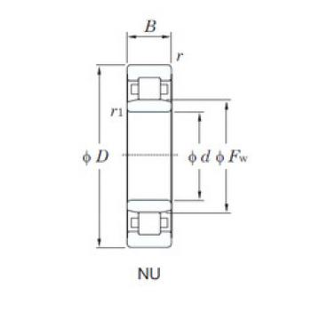 Cylindrical Roller Bearings Distributior NU1005 KOYO