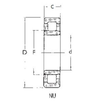 Cylindrical Roller Bearings Distributior NU1019 FBJ