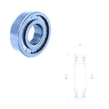 Cylindrical Roller Bearings Distributior NU208FMN Fersa