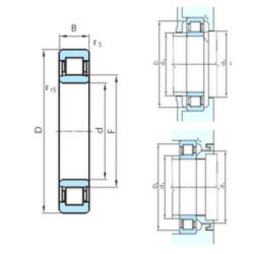 Cylindrical Roller Bearings Distributior NU1060 PSL