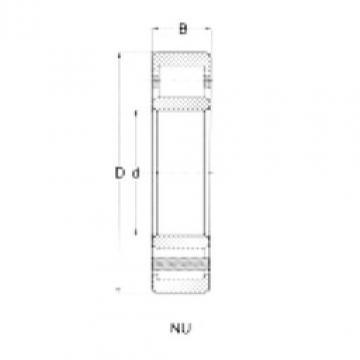 Cylindrical Roller Bearings Distributior NU217 CRAFT