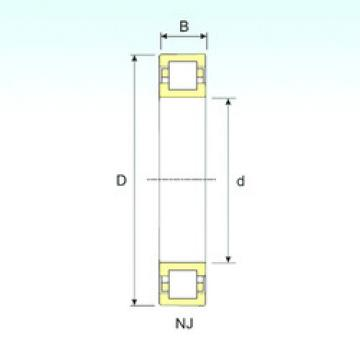 Cylindrical Roller Bearings Distributior NUP 236 ISB