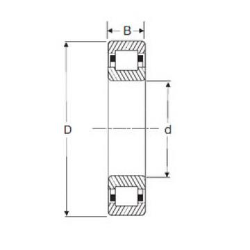Cylindrical Roller Bearings Distributior NUP 304 SIGMA