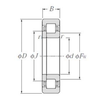 Cylindrical Roller Bearings Distributior NUP221 NTN