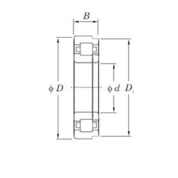 Cylindrical Roller Bearings Distributior NUP1068 KOYO