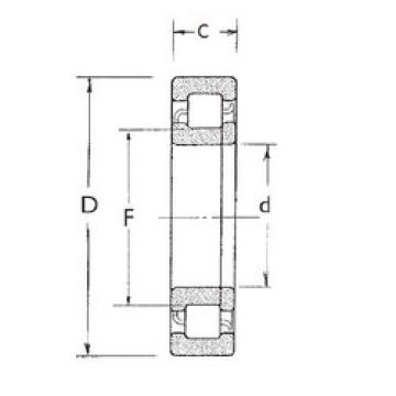 Cylindrical Roller Bearings Distributior NUP211 FBJ