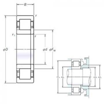 Cylindrical Roller Bearings Distributior NUP209EM NSK